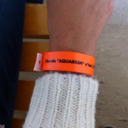 Le fameux bracelet