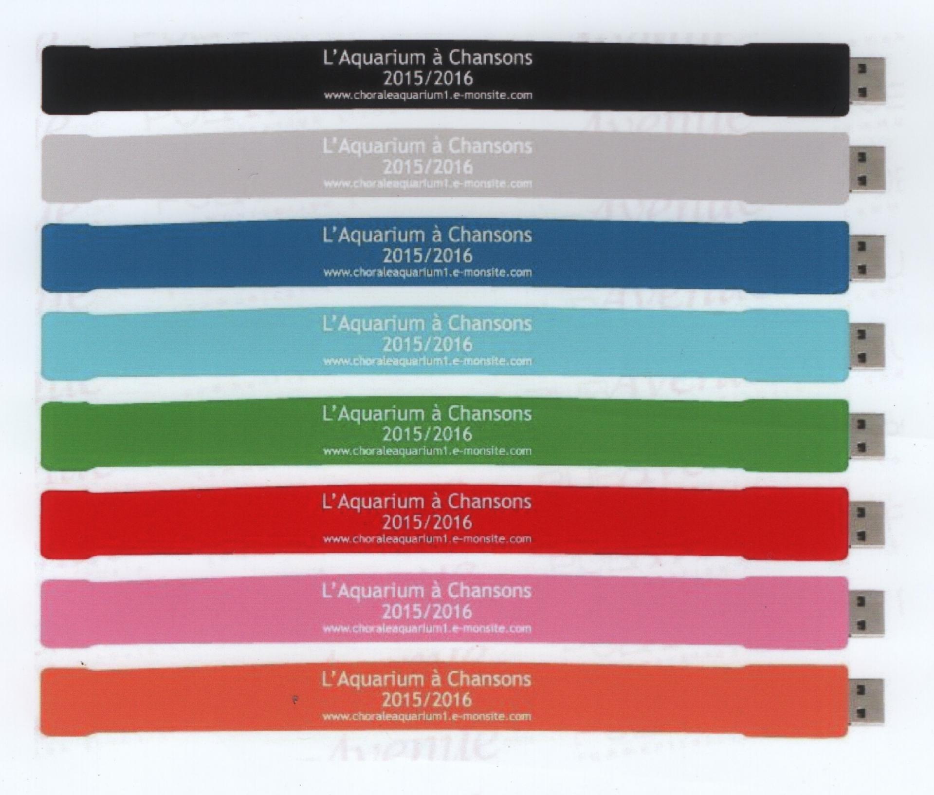 Photo site bracelets usb