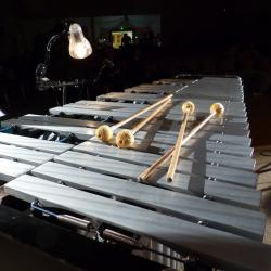 Le vibraphone et les baguettes de Thierry